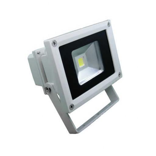 Central Lighting 12-24V/120V 800 Lumen Outdoor LED Flood Light