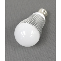 Central Lighting 12-24V/120V 600 lumen LED Bulb